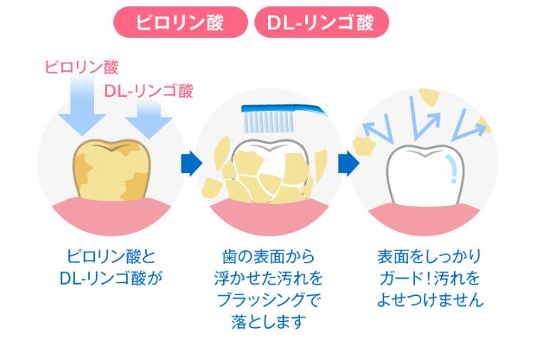 ディノベートのピロリン酸,DL-リンゴ酸