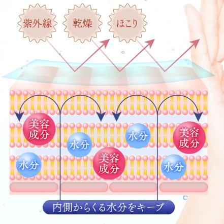 しろ彩セラミドリッチクリーム,バリア機能