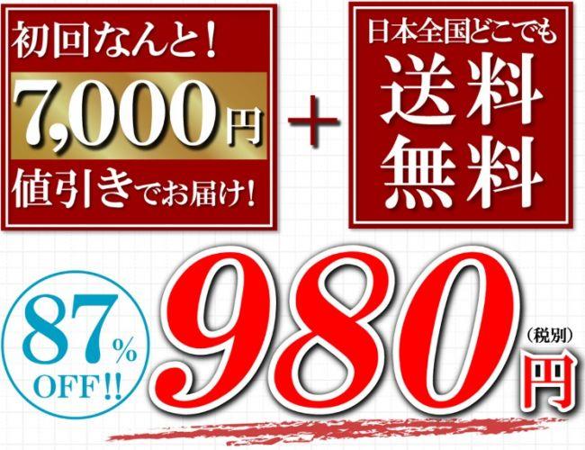 シャイニープラス,980円